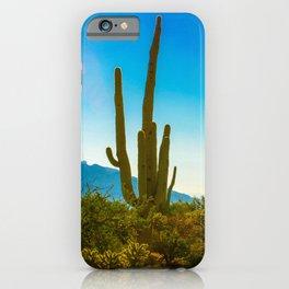 Saguaro Cactus in the Arizona Desert iPhone Case