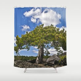 Pine Tree on the Ground of the Mount Etna Shower Curtain