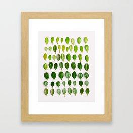 ombre leaves Framed Art Print