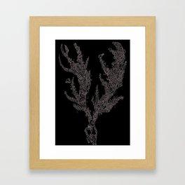 Kodaline Framed Art Print