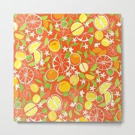 Citrus Squeeze Metal Print