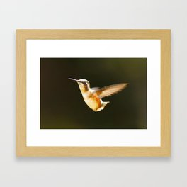Catch me if you can! Framed Art Print
