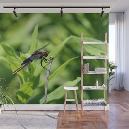 Dragon Fly 5 Wall Mural