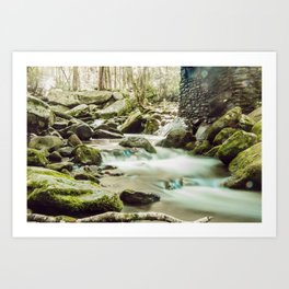 Streams of Tennessee Art Print