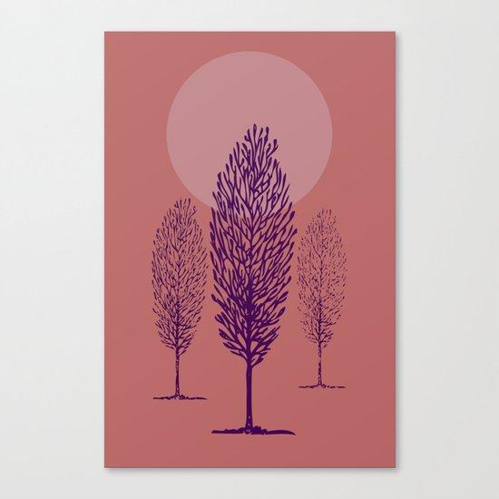 rosa di sera Canvas Print