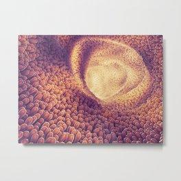 Intestines Metal Print