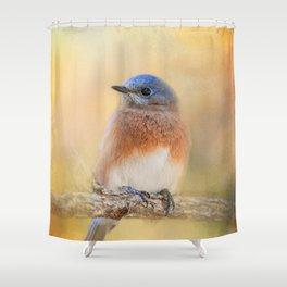 Autumn's Treasure Shower Curtain