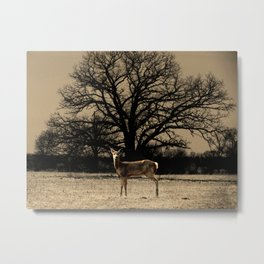 Rustic Deer Tree Modern Country Cottage Chic Farmhouse Art A587 Metal Print