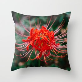 Charleston Hurricane Lily VI Throw Pillow