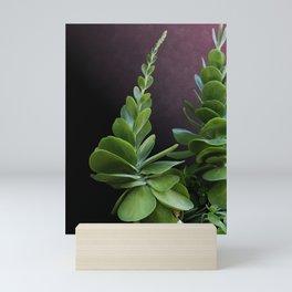 Succulent Spear Mini Art Print