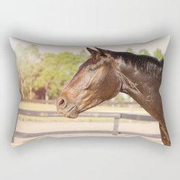 Bubba in Sunlight Rectangular Pillow