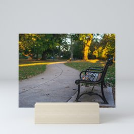 West Park Bench And Pathway Mini Art Print