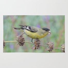 Lesser Goldfinch Snacks on Seeds Rug
