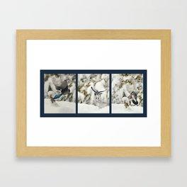 Blue Jay action Framed Art Print