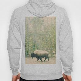 bison I Hoody