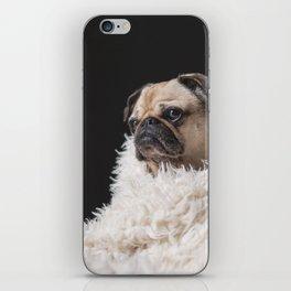 Cute pug iPhone Skin