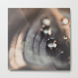 Drops on leaf. Metal Print