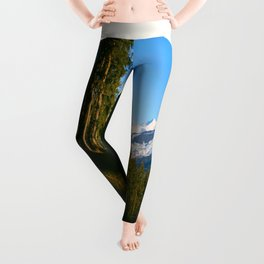 Mid Century Modern Round Circle Photo Secret Forest Hill Leggings