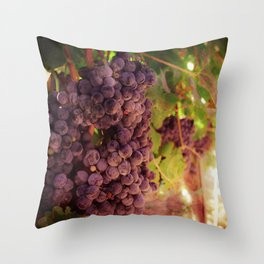 Vineyard Vines Throw Pillow