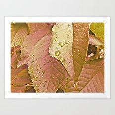 cherry leaves Art Print