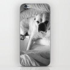 The Good Dog iPhone & iPod Skin