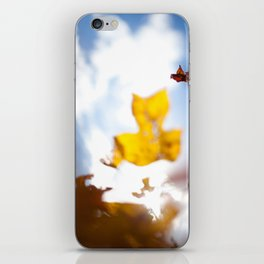HOME: EARLY OCTOBER, YARD TREES iPhone Skin