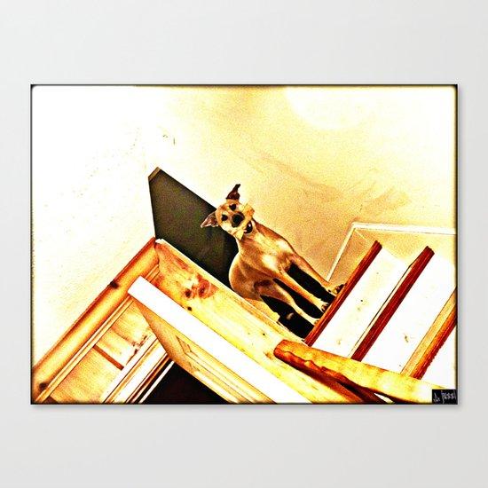 Vertigo Dog Canvas Print