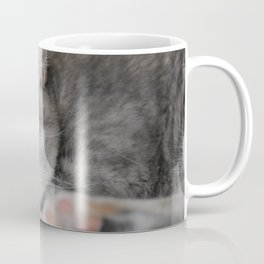 Sleepy cat Coffee Mug