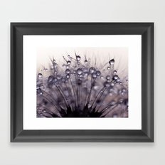 dandelion purple III Framed Art Print