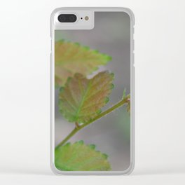 Transitioning Leaves Clear iPhone Case