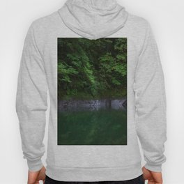 A Magical Pool in the Forest Hoody