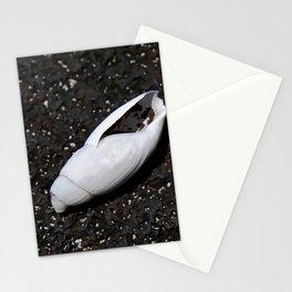 Seashell Stationery Cards