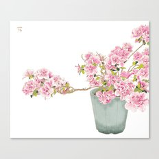 Heavenly Blossom #2 Canvas Print