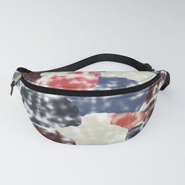 Abstract 189 Fanny Pack