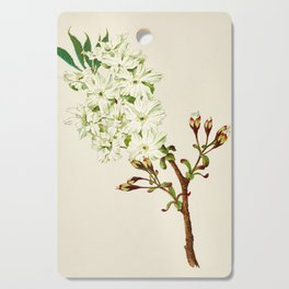 Gyoi-ko or Robe Yellow Cherry Blossoms Cutting Board