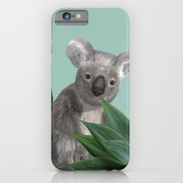 Koala Bear between Agave leaves iPhone Case