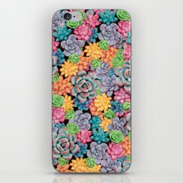 Rainbow Candy Succulent Plants | Colorful Cacti iPhone Skin