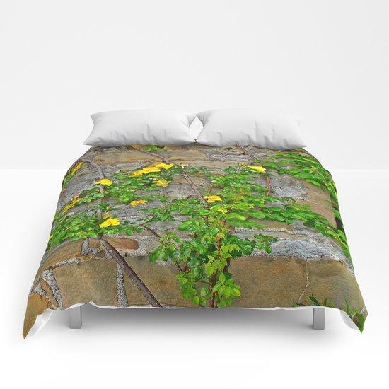 Wallflowers 2 Comforters