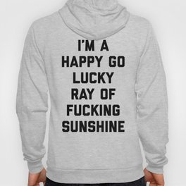 Ray Of Fucking Sunshine Funny Quote Hoody