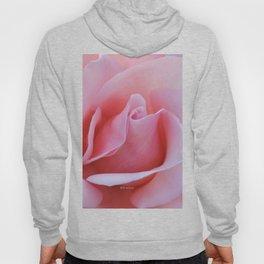 Rose Petal Pink Hoody