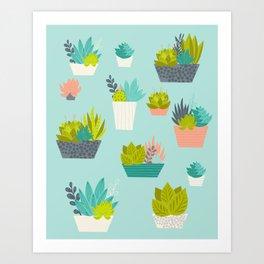 Succulent Container Garden Art Print