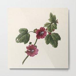 M. de Gijselaar - Twig with purple flowers (1830) Metal Print