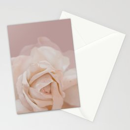 DUSKY ROSE Stationery Cards