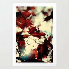 Autumn Leafs Art Print