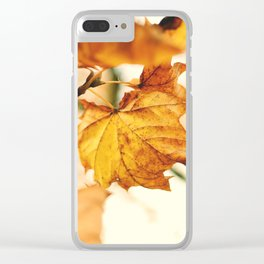 A Fall Like This Clear iPhone Case