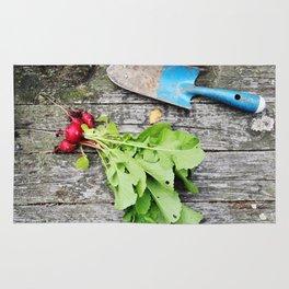 Radishes and garden shovel Rug