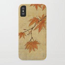 Asiafoldantique iPhone Case
