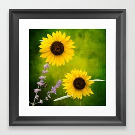 Sunflowers. Framed Art Print