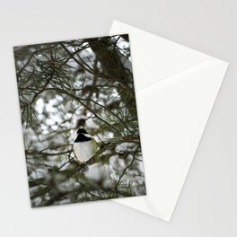 Snow 1 Stationery Cards