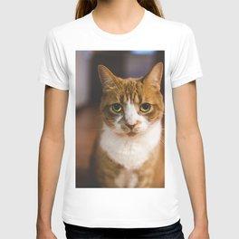 The Cat. T-shirt
